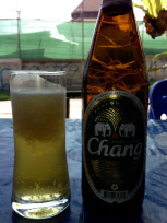 icy beer